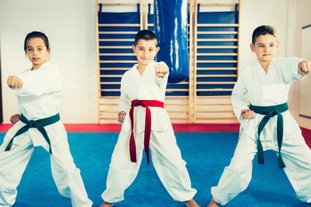 fighting stance: Children in Taekwondo fighting stance. Toned image