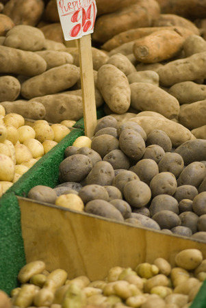 grocer: Potato varieties at the market stall. Focus set on purple potatoes.