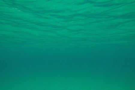 ''wide angle'': Water surface from below. Wide angle, convenient as background