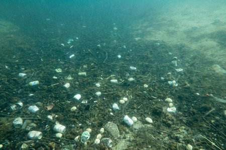 tin can: Tin can and plastic garbage polluting the sea floor. Underwater shot, wide angle, selective focus Stock Photo