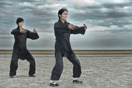 two persons only: Tai Chi Chuan practice in a barren landscape