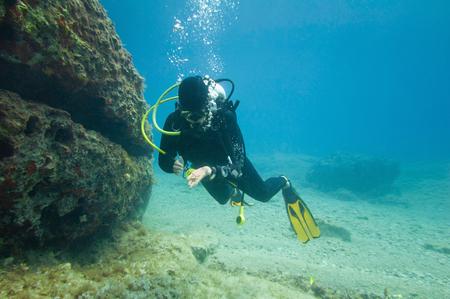 scuba diver: Scuba diver found sea star