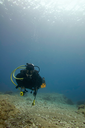 scuba diver: Scuba diver underwater on the top of the coral reef