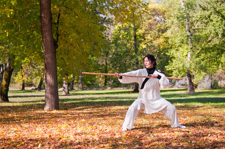 fighting stance: Martial artist in Kung Fu fighting stance