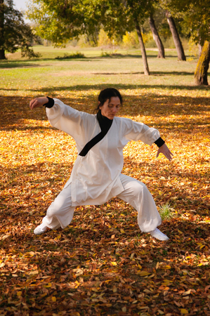 ki: Woman training ki gong on field Stock Photo
