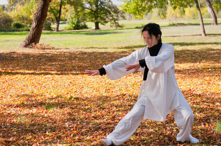 traditional clothing: Tai Chi master in traditional clothing performing in park