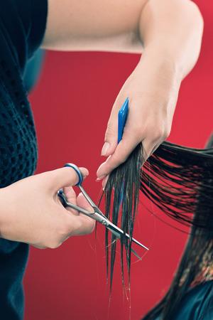 haircutting: Cutting hair in hair salon