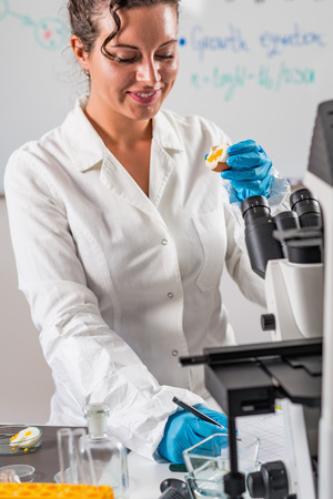 Quality control expert inspecting at egg in the laboratory Stock Photo