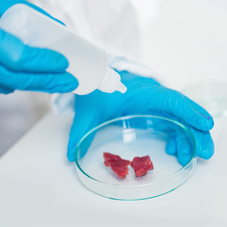 specimen testing: Quality control expert inspecting at meat  in the laboratory Stock Photo
