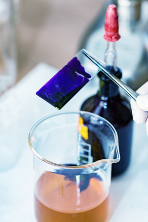 Microbiology laboratory work Stock Photo