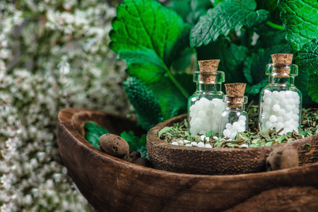 Small bottles with homeopathic pills in wooden bowl with dried herbs, fresh leaves in background