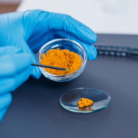 Quality control expert inspecting at curcuma in the laboratory Stock Photo