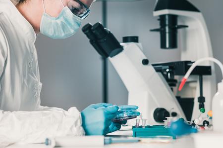 Microbiología, trabajando con placas de Petri.