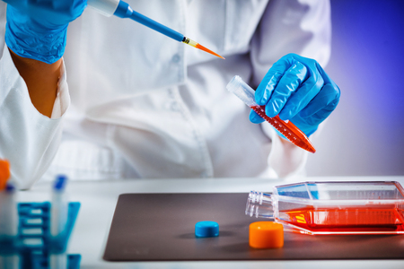 Biotechnology engineer inspecting cell culture flask Banque d'images - 114925526