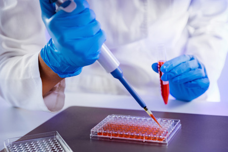 Biology laboratory, scientist working with cell culture Stockfoto