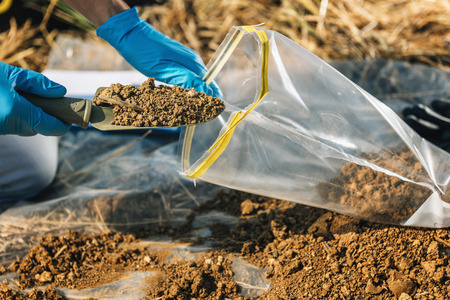 Soil Test. Agronomist putting soil with garden shovel in soil sample bag outdoor. Environmental research Foto de archivo