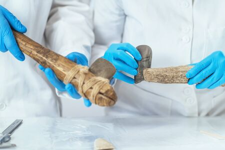 Archaeology researcher in laboratory reconstructs usage of ancient tools. 스톡 콘텐츠