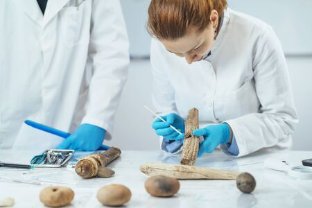 Archaeology researcher in laboratory reconstructs usage of ancient tools. 스톡 콘텐츠 - 131480866