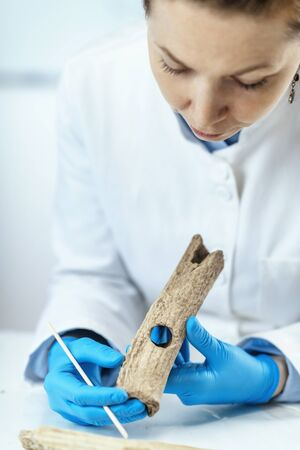 Archaeology researchers in laboratory reconstruct ancient tools. 스톡 콘텐츠