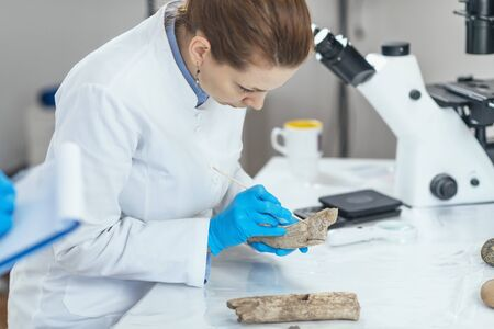 Young female archaeology researcher in laboratory analyzing ancient antler tool.