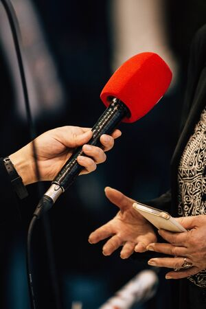 Journalists holding microphone, interviewing female speaker.