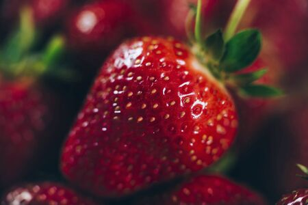 Fresh Strawberries. Antioxidant fruit close up shot