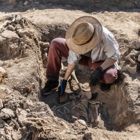Archaeological excavations. Young archaeologist excavating part of human skeleton and skull from the ground. Stock Photo