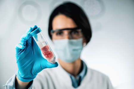 Food quality control of red meat. Sensory evaluation of beef sample in a test tube Stock Photo