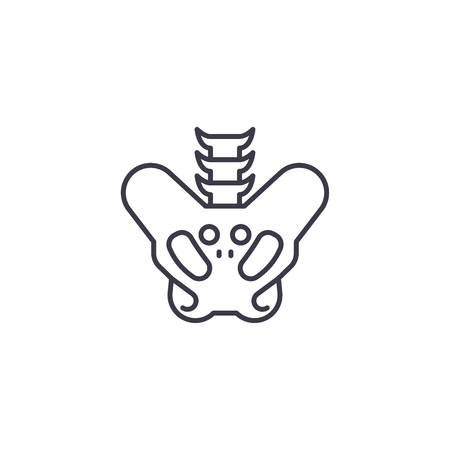 Pelvis linear icon concept. Pelvis line vector sign, symbol, illustration. Illustration