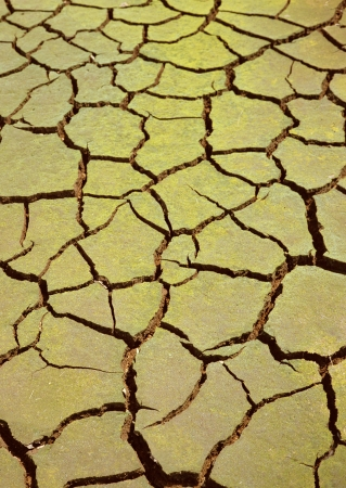 Dry soil texture on the ground Stock Photo - 13232488