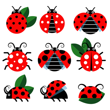 cute lady: Ladybug icons. Cute ladybugs funny insect vector on white Illustration