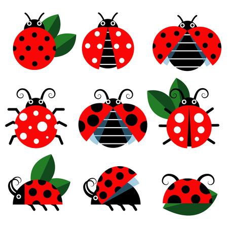 lady fly: Ladybug icons. Cute ladybugs funny insect vector on white Illustration