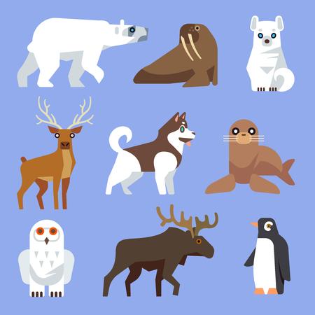 North Arctic and Antarctic animals and birds. Vector flat collection. Winter wild animal, polar animal, wildlife mammal animal illustration