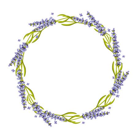 Lavendel ronde frame, krans. Bloemen lavendel frame, bloem krans natuur lavendel plant. vector illustratie Vector Illustratie
