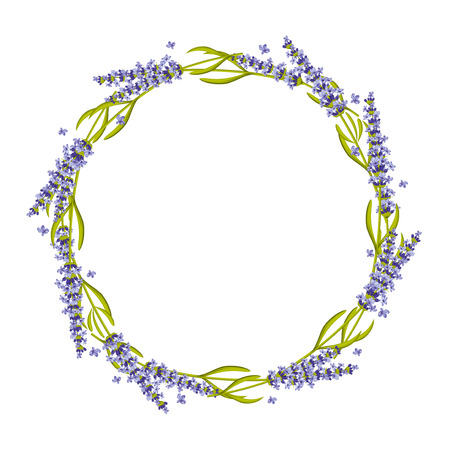 Lavendel ronde frame, krans. Bloemen lavendel frame, bloem krans natuur lavendel plant. vector illustratie