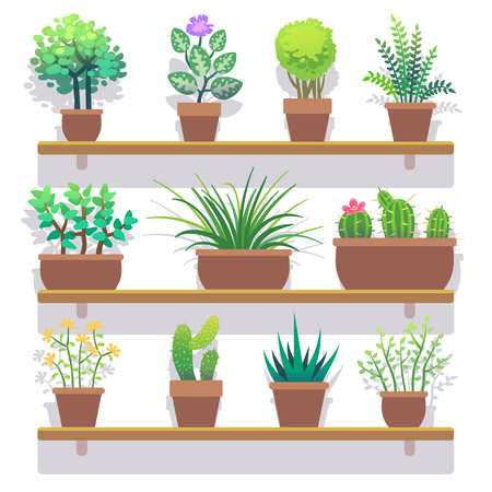 home gardening: Indoor plants in pots flat icons set. Interior plant in pot and nature plant for home gardening. Vector illustration Illustration