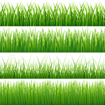 Green seamless grass vector set. Green lawn grass and field grass seamless meadow pattern illustration Ilustração