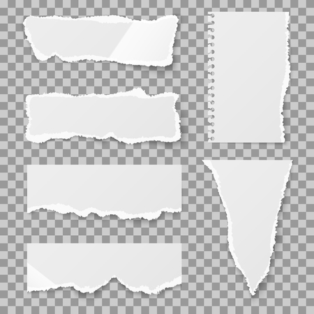 lacerated: Blank torn paper with bends and tears. Ripped sheet paper and reminder lacerated paper blank. Vector illustration set