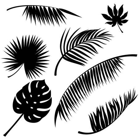 Tropical leaves black vector silhouettes on white