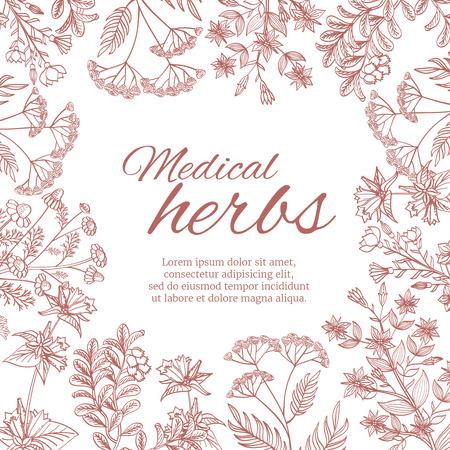 Fond décoratif vintage avec des plantes médicinales médicinales organiques.