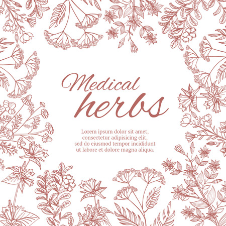 healing: Vintage decorative background with medicinal organic healing plants.