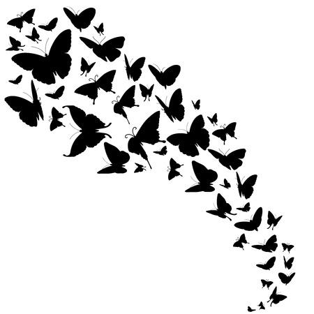 telón de fondo abstracto del vector con diseño de mariposas. libre de mariposas en el color negro y el flujo de mariposas insectos ilustración