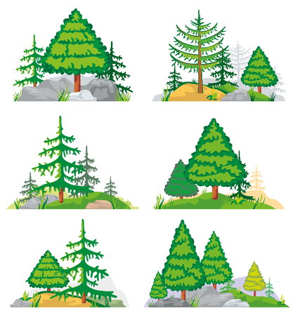 evergreen tree: Landscapes with coniferous trees, grass and stones. Vector landscape nature with tree and plant. Forest landscape illustration of set