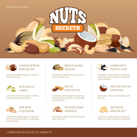 secrets: Natural raw nuts mix brochure design template. Set of nuts almond coconut cashew and peanut. Information banner about secrets nuts. Vector illustration