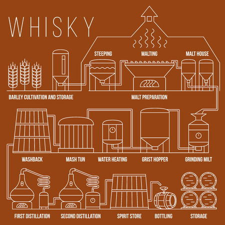 Whiskey productieproces vector infographic template. Whiskey proces destillatie illustratie, whisky productie drank in lineaire stijl