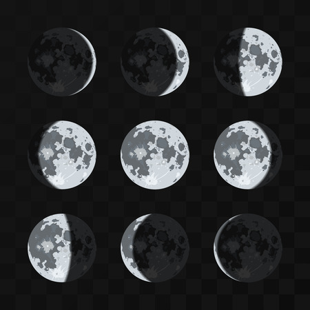 moon phases: Moon phases vector set. Night moon and nature full moon illustration Illustration