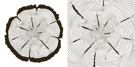 rings on a tree cut: Tree growth rings, saw trunk cuts . Wooden tree rings or incision trunk of tree. Vector illustration Illustration