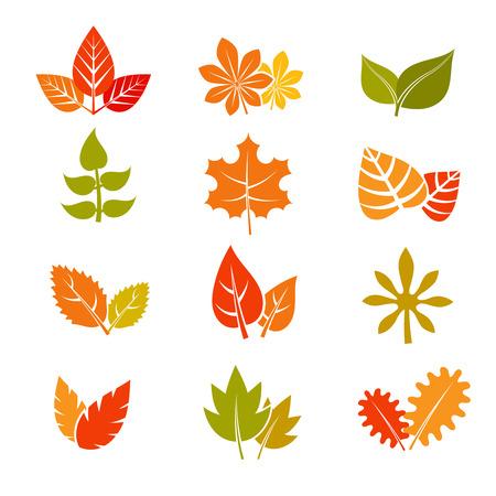 autunno multicolore foglie piatte icone vettoriali. Autunno feuille foglia raccolta. Set di foglie di autunno, foglia d'acero illustrazione