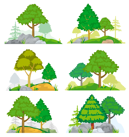 deciduous: Landscapes with coniferous and deciduous trees, grass and rocks. set of nature landscape with tree and rock, illustration forest tree coniferous Illustration
