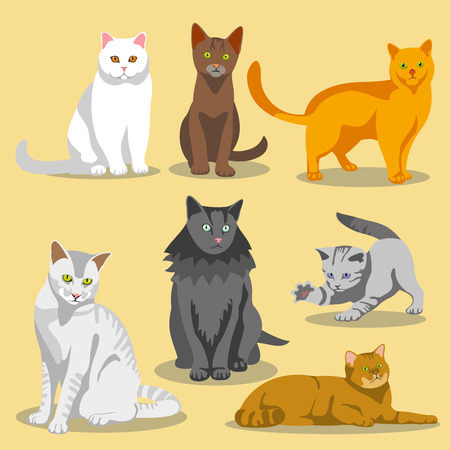 markings: Cute cats with different colored fur and markings. Set of cats and illustration cat pet